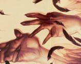 BlackSwanhandsartworkMondoTsr3